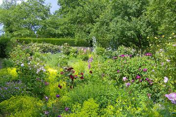 smallhythe_place_garden